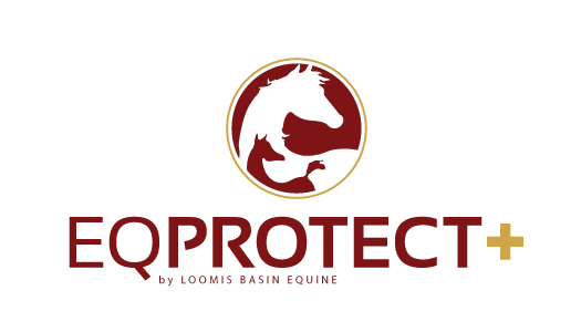 eq-protect-plus-logo